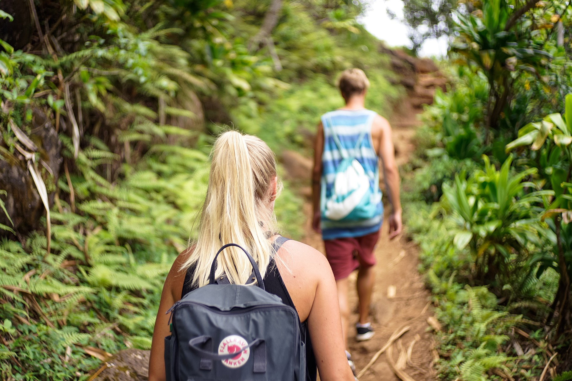 Top 10 Hiking Trails in the Smoky Mountains