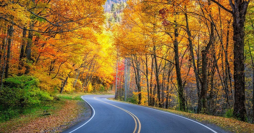 Fall Foliage and Activities in the Smokies